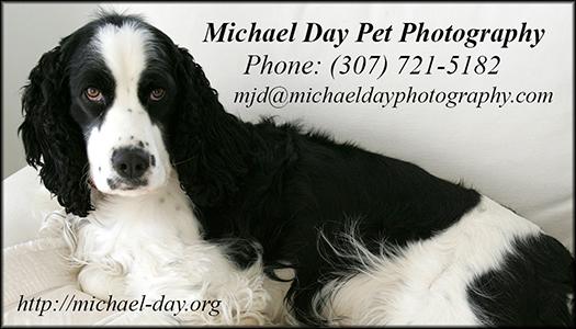 PetPhotographyBusCard(3.5x2,150r)