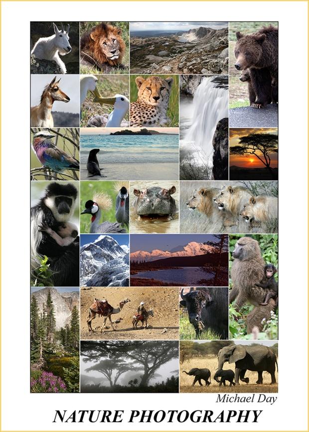 NaturePhotographyPoster(7.5x5,150rr)