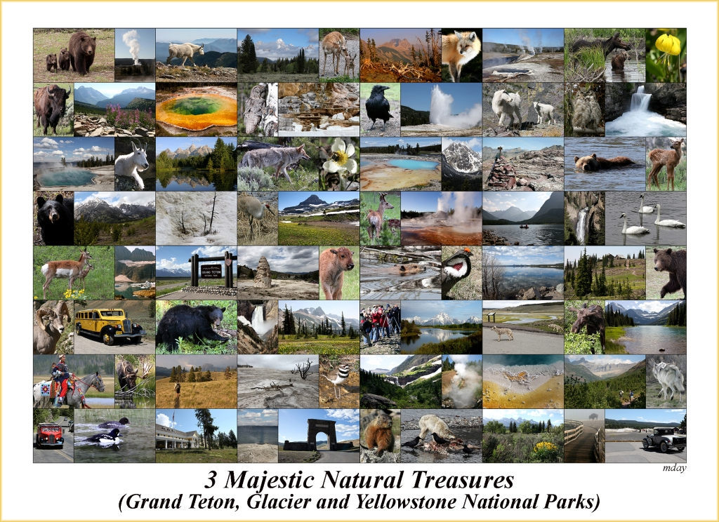 majesticparkscollage7-5x5-2300labelbd